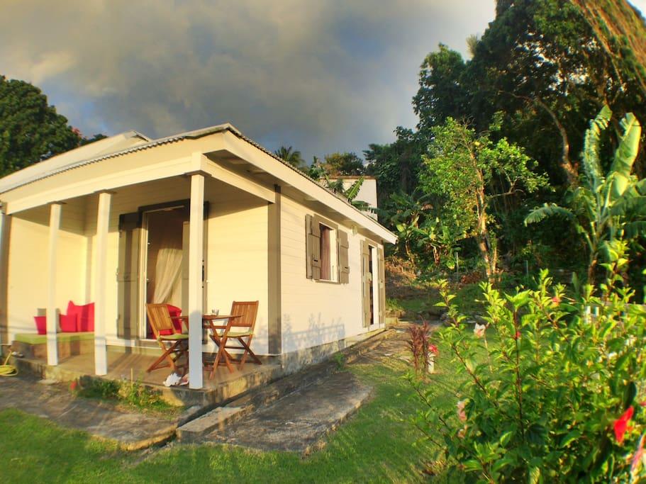 Vue extérieure du studio LittleHouse et du jardin