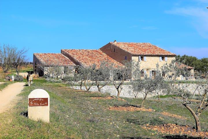 Bergerie nature du XVIIe prés des Gorges du Verdon - Quinson - Daire