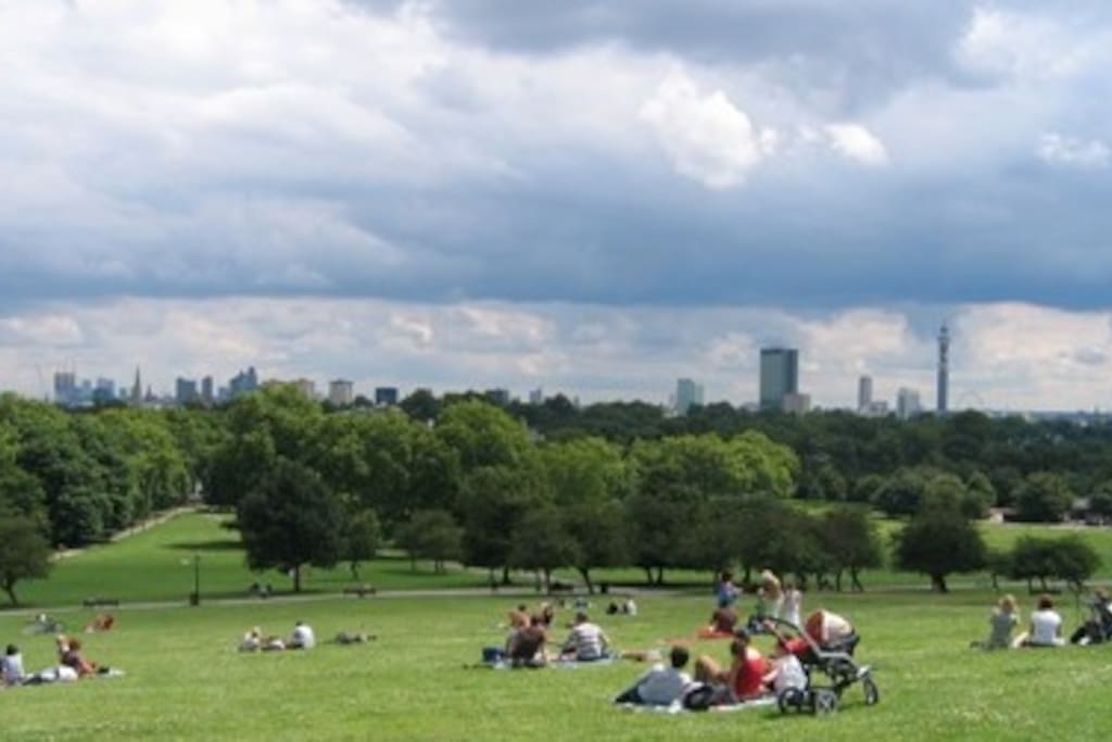 Primrose Hill for a walk near Belsize Park