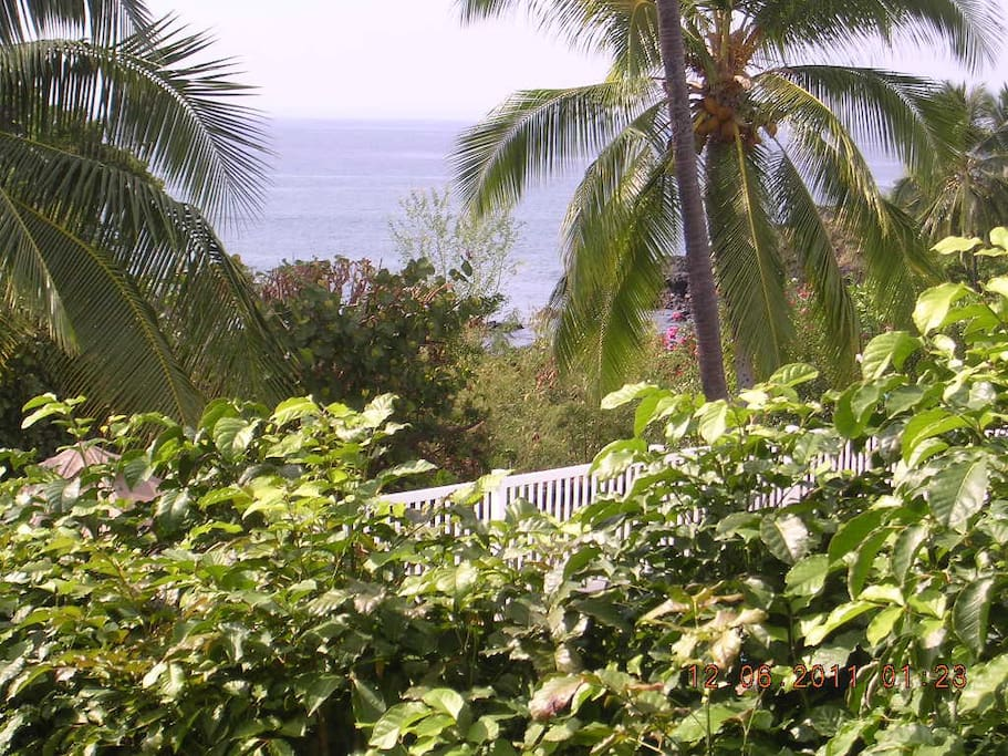 View from lanai where you can lounge, cook, and eat outdoors every day.