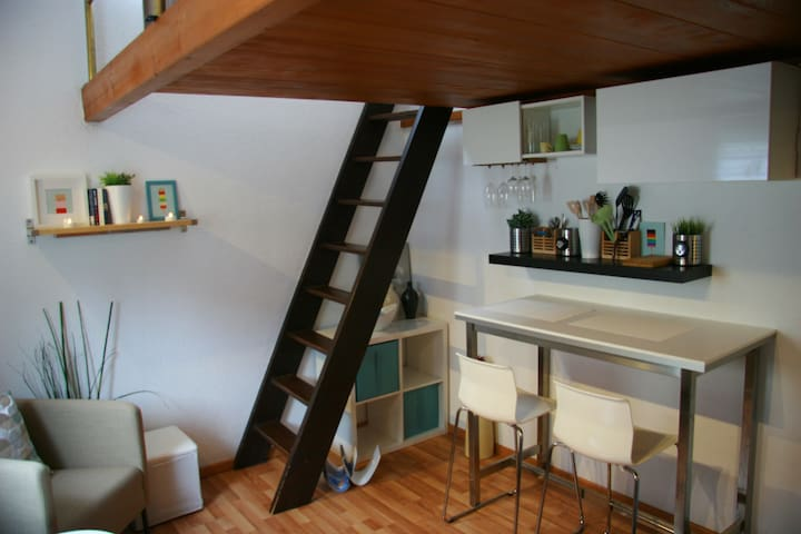 Central nice Studio close to old town Baden&Zurich - Wettingen - Apartemen