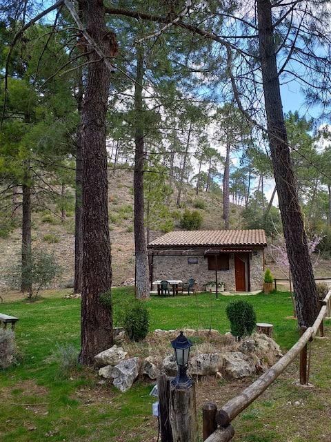 Cabaña en plena naturaleza