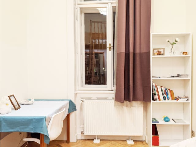 Cozy room and homey flat in central Budapest!
