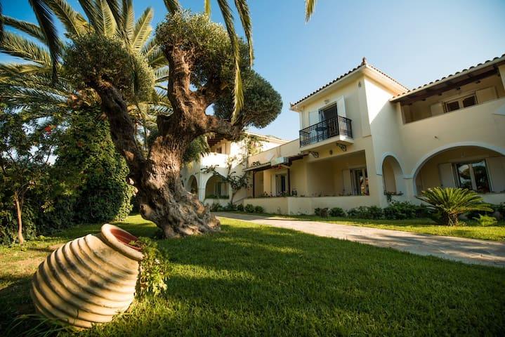 Villa Phoenix Studios - Limni Keriou - Willa
