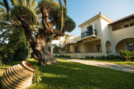 Villa Phoenix Studios - Limni Keriou - Villa