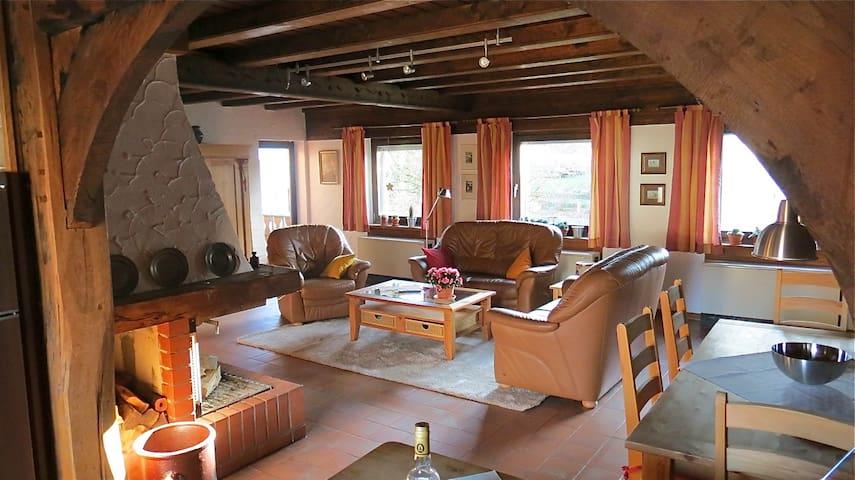 Urlaub im Ferienhaus Eggetal - Horn-Bad Meinberg - Apartemen