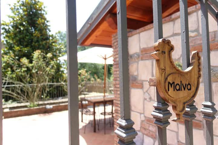 Malvarosa holiday home (malva home) sea gaeta