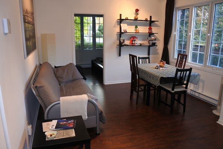 Private 3½ Apt. Downtown-Longueuil/Montreal Canada