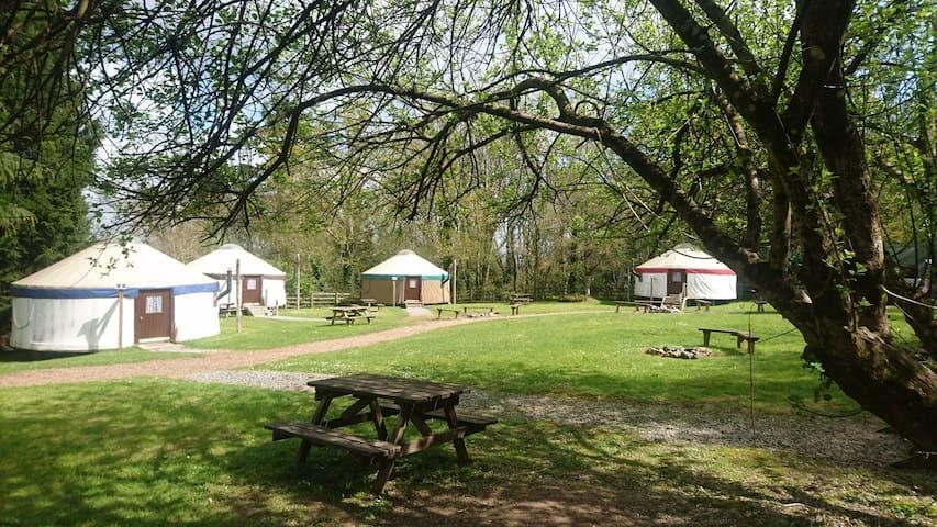 Twin Yurt in Woodland Village