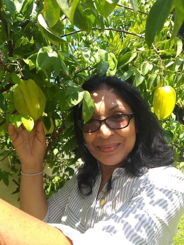 Our garden products, carambola(star fruit)