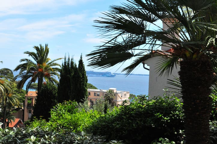 Cannes - Studio with Terrace, Seaview and Garden