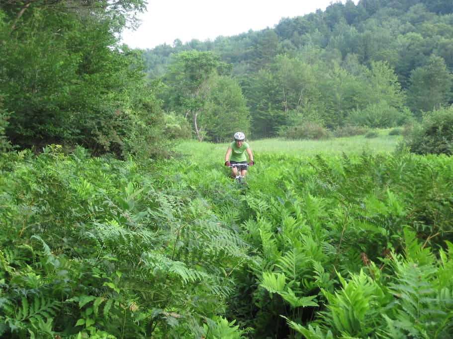 Maintained mountain bike trails for all abilities, dirt roads to tough single track, right out the door.