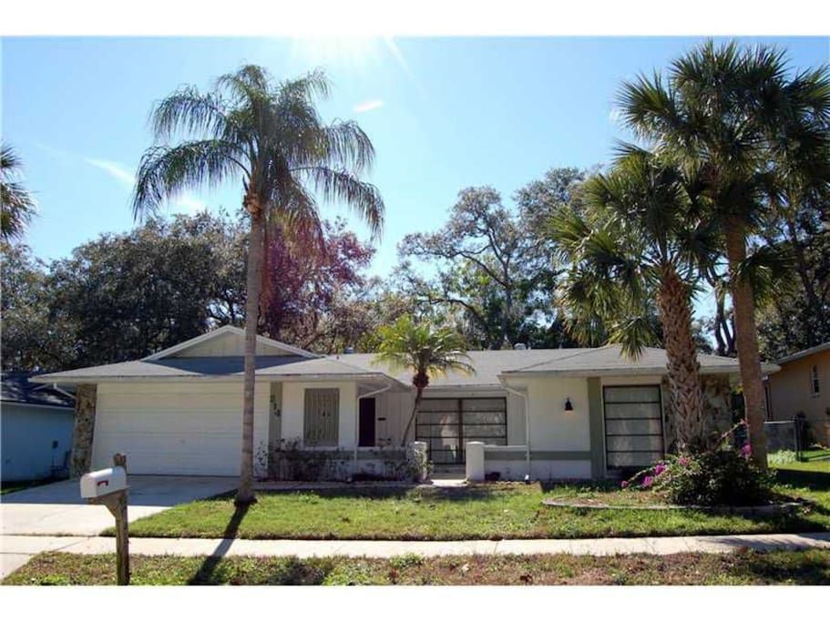 clearwater area 3bd 2 5b pool home houses for rent in safety harbor florida united states