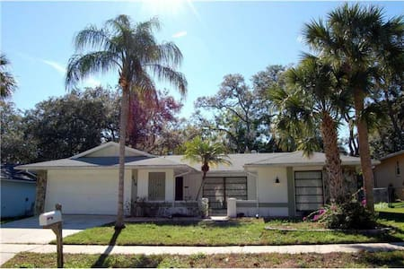 Clearwater Area 3BD, 2.5B Pool Home - Hus