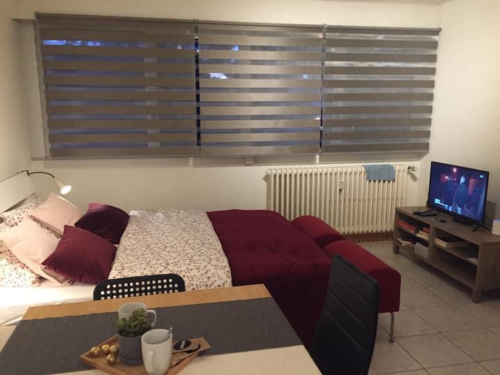 Joli studio confortable aux portes de Genève