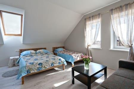 Room 2 Karkles Villa - Karklė