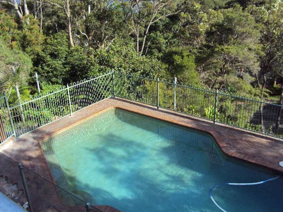 View of pool from top deck in the morning sun.