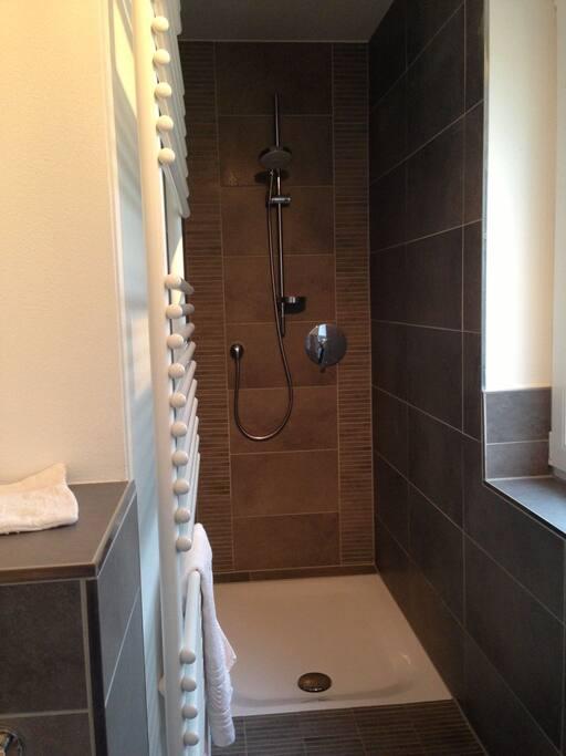 Modernes Bad mit begehbarer Dusche