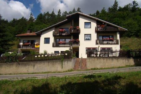 Penzion Lída - ubytování v apartmanu - Srbsko - Dom