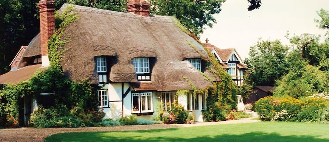 Thatched rural bed & breakfast