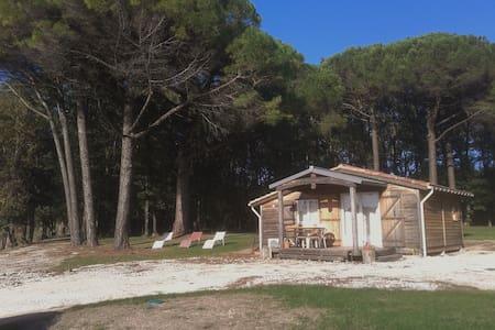 Chalet bois 35 m² - Boisse