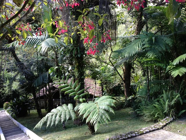 Country home & lush gardens - Coban
