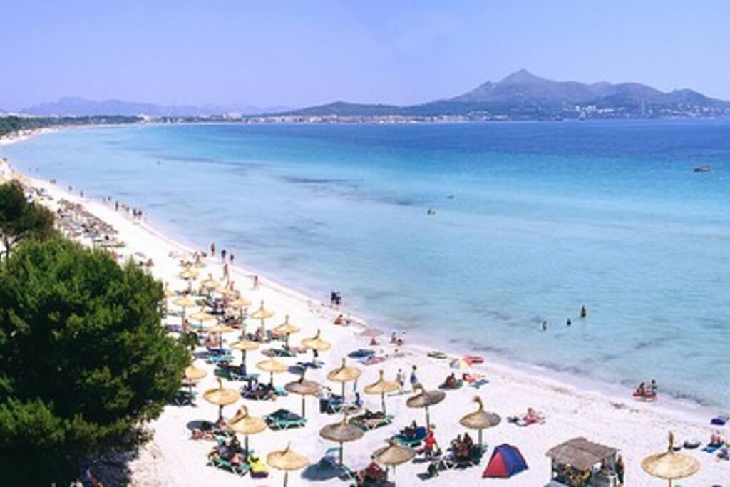 Beach 800 meters..