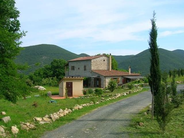 Holiday apartments Tuscany coast  - Castellina Marittima - Apartment