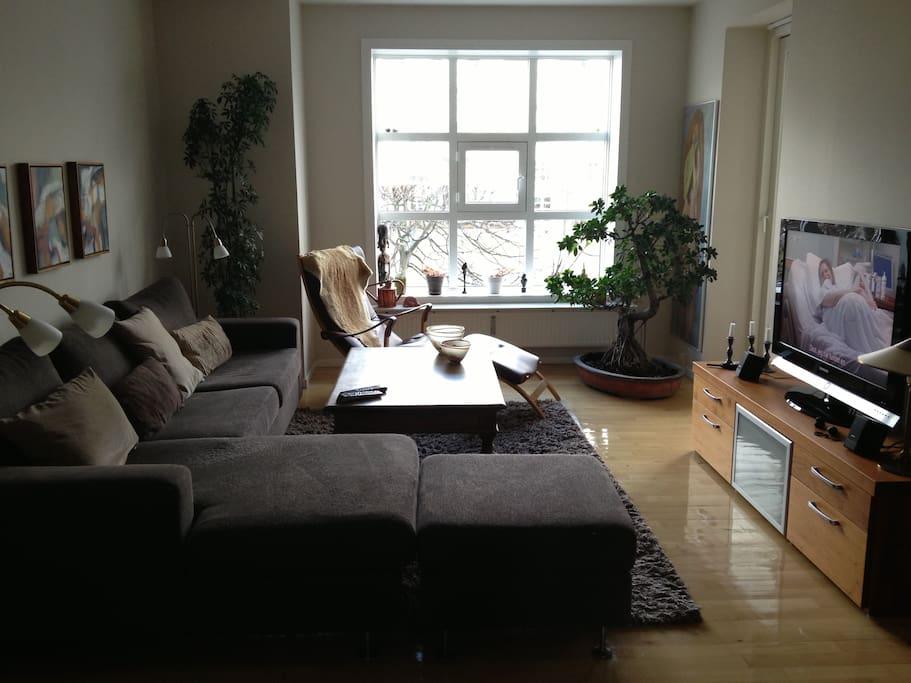 Flatscreen-tv in the living room.