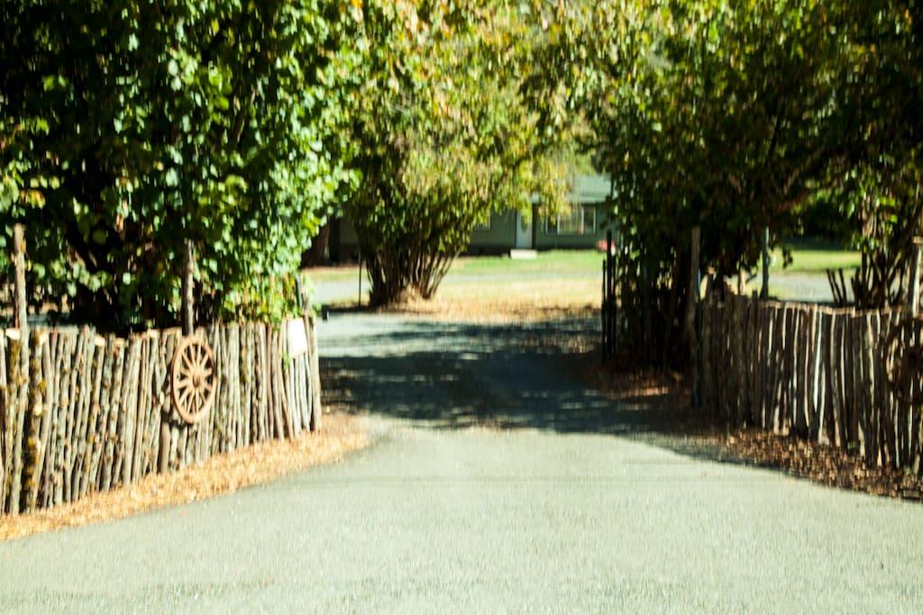 Entrance to Cedar Ranch