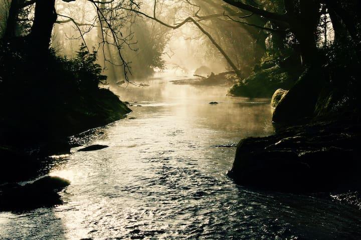 Early mist along the Glengarriff River.