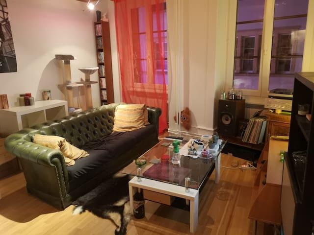 Duplex cosy pour couple, personne seule ou amis