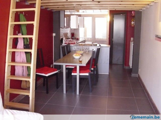 Nice appartment, 50m from the beach - De Panne - Apartment