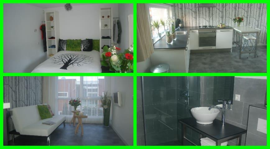 Studio Het Weerhuis:Rotterdam-South - Barendrecht - Apartemen