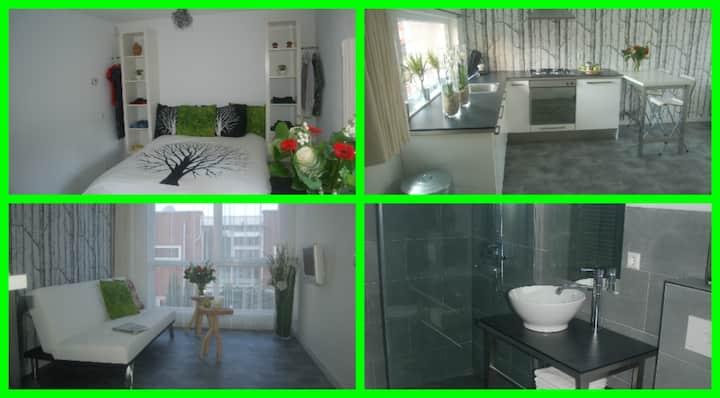 Studio Het Weerhuis:Rotterdam-South