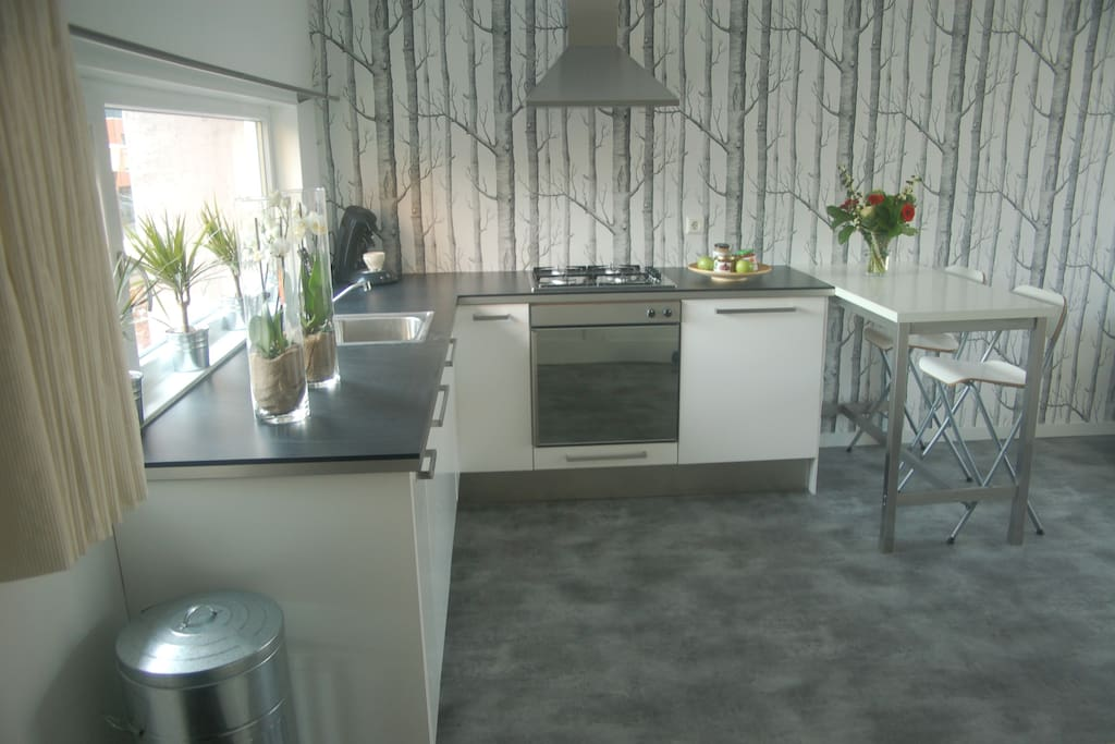 Accommodation Studio B&(B) Het Weerhuis: South of Rotterdam: kitchen area