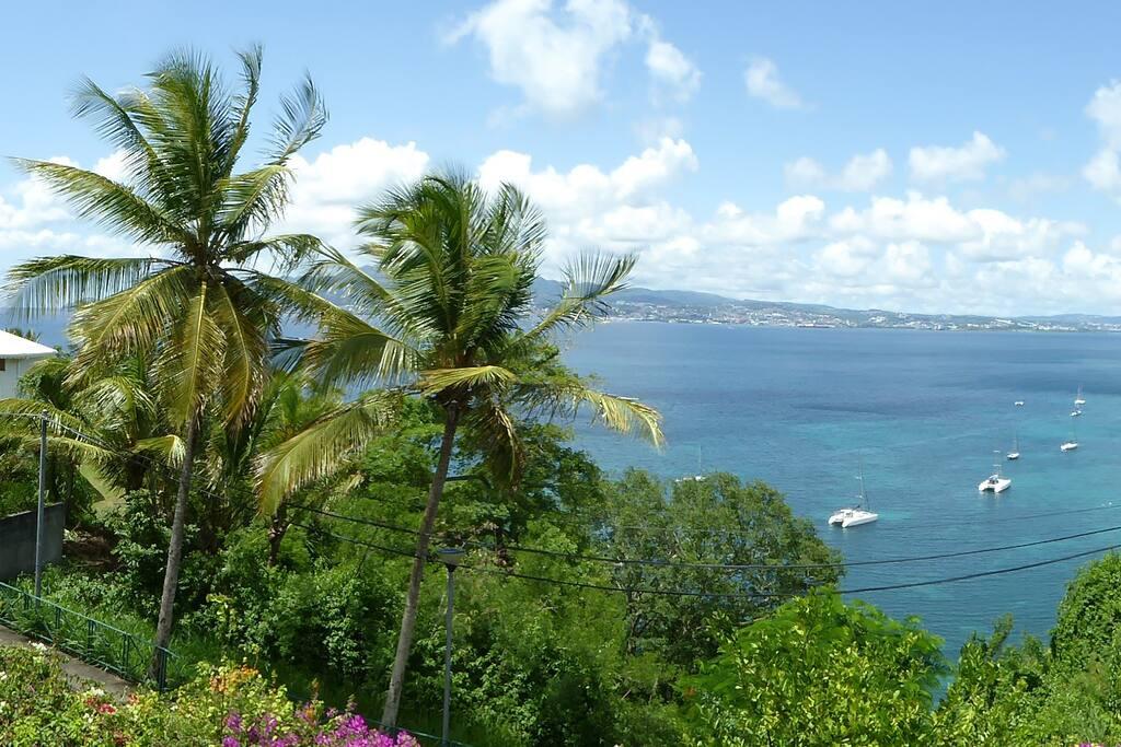 Location Appartement Fort De France Martinique