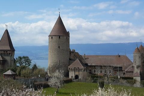 Charmant appartement au pied du Château medieval