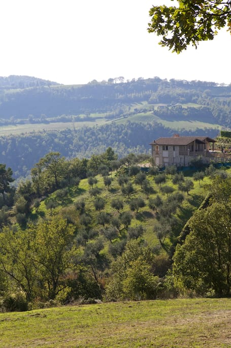 Beautiful umbrian countryside
