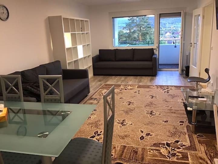 Geräumige Vier-Zimmer-Wohnung in Freiburg