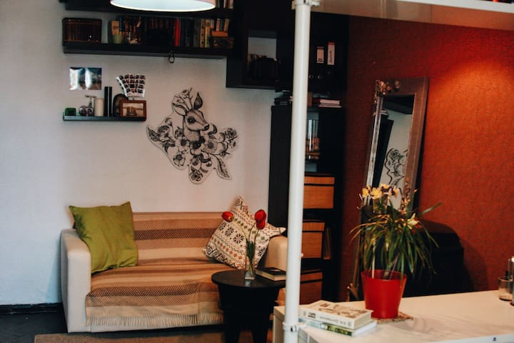 Комната в центре города Кронштадт - Кронштадт - Apartment