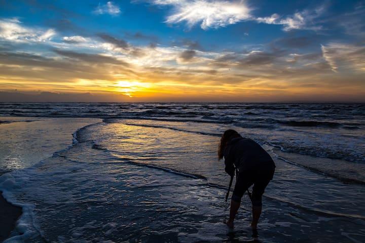 -Sunrise in Fernandina. Need we say more?