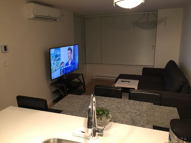 58 inch tv.
