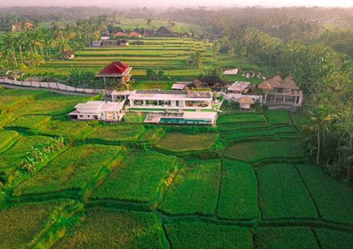 Luxury Villa Surrounded by Rice fields in Ubud