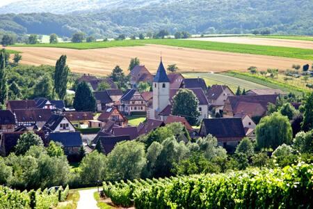 Confortable logement en duplex au coeur des vignes - Cleebourg