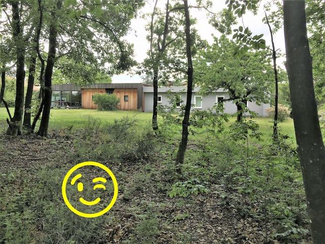 La maison bois de Sofroi