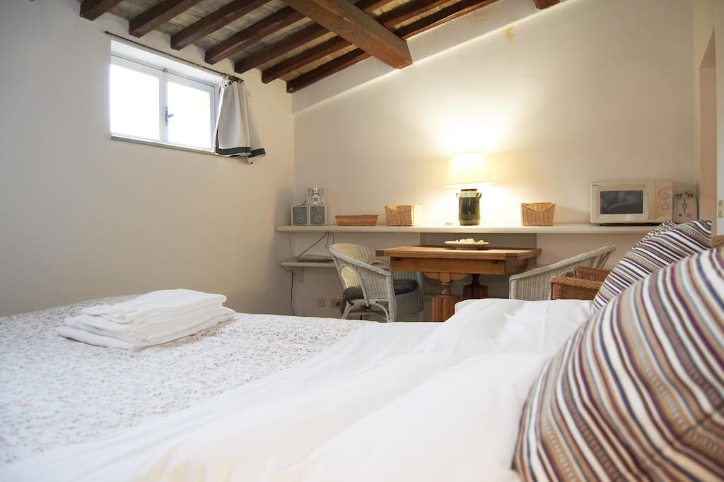 Attic 230 meters from Colosseum!!!