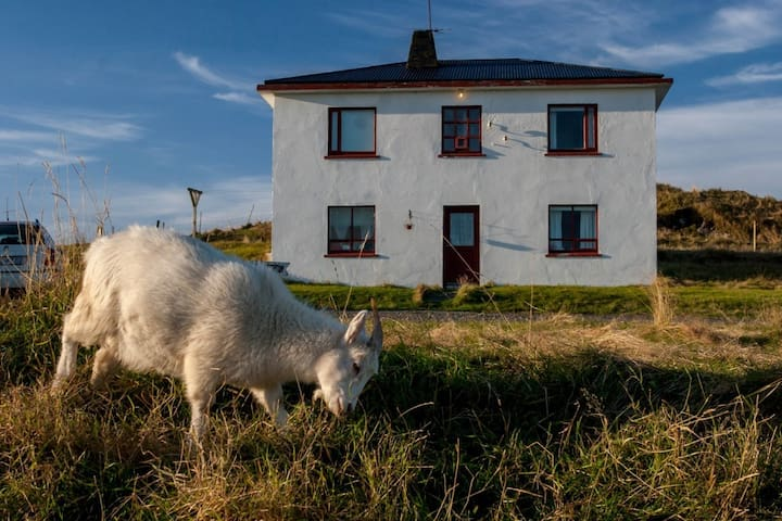 Hólmur Guesthouse - Hornafjörður - Bed & Breakfast