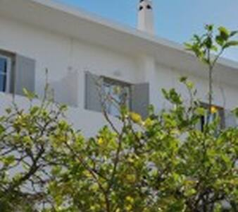 Anezina Hotel, Drios, Paros - Drios