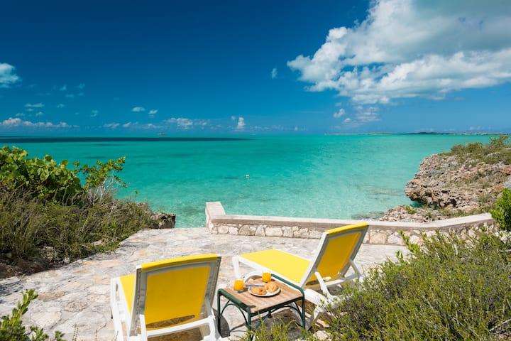 South Seas Villa - 5 BRs set in 4 acres Oceanfront
